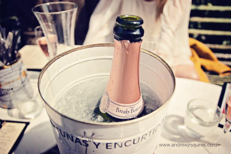 Bottle of Champagne in an ice bucket by Andrew J R Squires Photography