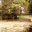 Wedding Supplier News - Dawn and Gavin's Manor by the Lake Wedding