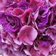 Wedding Supplier News - Purple and Ivory Wedding Flowers