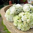 Wedding Supplier News - Flowers for a Friend's Wedding
